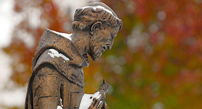 cropped-snowhero